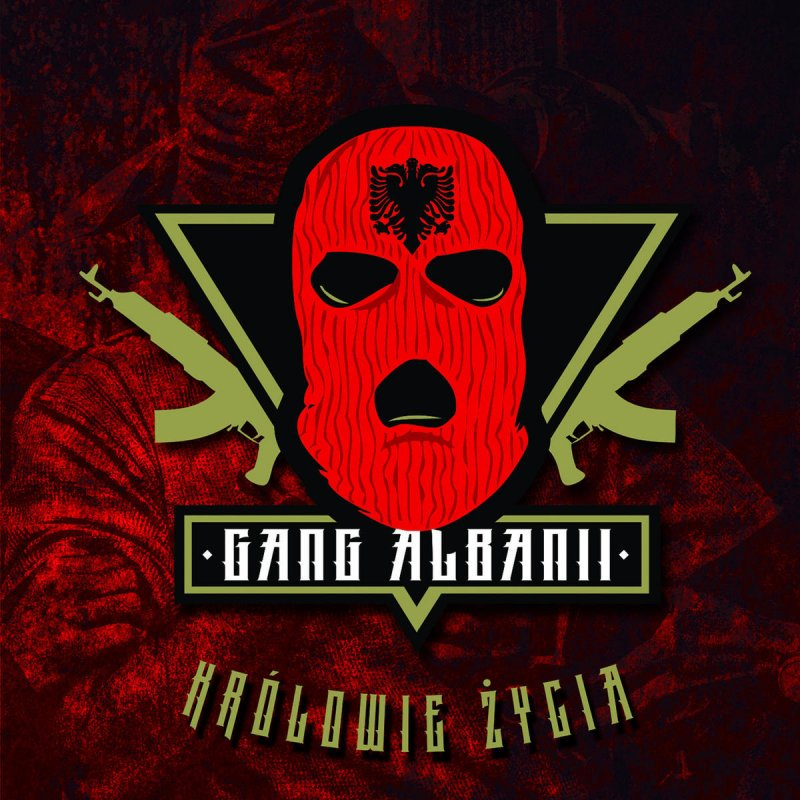 gang albanii królowie życia