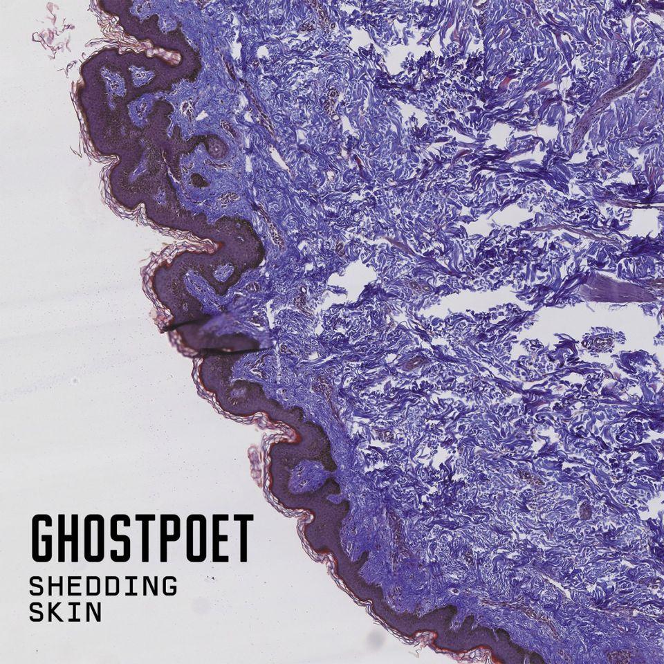 ghostpoet shedding skin